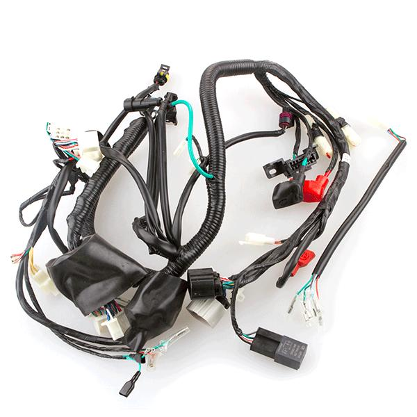 Wiring Loom For Xgj125
